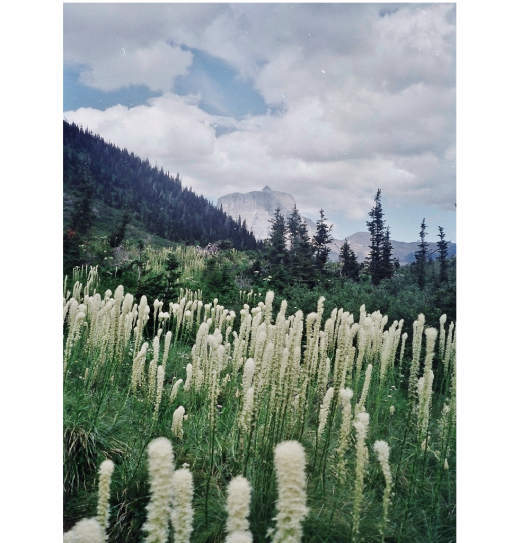 hiking-notes-2-vertical-lg